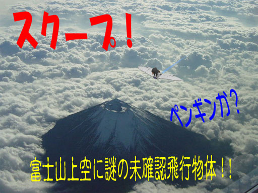 fly_pen.jpg